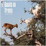 2018 Goats in Trees Wall Calendar (Wall)