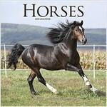 Horses Calendar 2018 (Calendar)