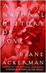 [중고] A Natural History of Love (Paperback)
