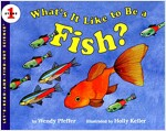 [중고] What's It Like to Be a Fish? (Paperback)