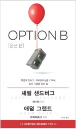 옵션 B : 역경에 맞서고, 회복탄력성을 키우며, 삶의 기쁨을 찾는 법