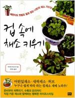 [중고] 컵 속에 채소 키우기