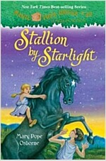 Stallion by Starlight (Hardcover)