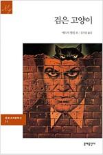 검은 고양이 - 문예 세계문학선 030