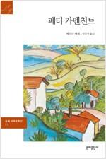 페터카멘친트 - 문예 세계문학선 053