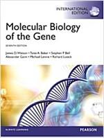 Molecular Biology of the Gene (Paperback)