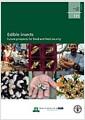 [중고] Edible Insects: Future Prospect for Food and Feed Security (Paperback)