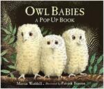 Owl Babies (Hardcover)