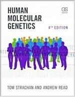 Human Molecular Genetics (Paperback, 4th)