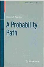 A Probability Path (Paperback, 2014)