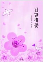 진달래꽃 (김소월 시선집)