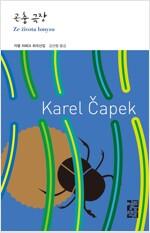 곤충 극장 - 열린책들 세계문학 204