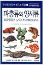 파충류와 양서류 - 자연 핸드북 도감 5