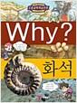 [중고] Why? 화석