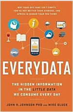 Everydata: The Misinformation Hidden in the Little Data You Consume Every Day (Hardcover)