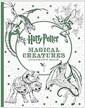 [중고] Harry Potter Magical Creatures Coloring Book (Paperback)