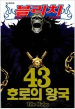 [중고] 블리치 43