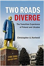 Two Roads Diverge : The Transition Experience of Poland and Ukraine (Paperback)