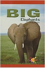 Big Elephants (Paperback)