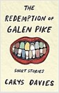 [중고] The Redemption of Galen Pike (Paperback)