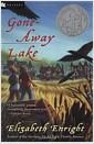 [중고] Gone-Away Lake (Paperback)
