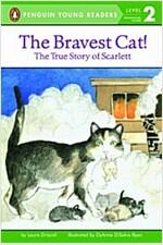 The Bravest Cat! (Paperback)