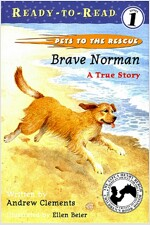 Brave Norman: A True Story (Paperback, Repackage)