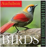 Audubon Birds Page-A-Day Calendar 2018 (Daily)
