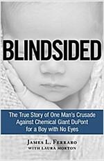 [중고] Blindsided: The True Story of One Man's Crusade Against Chemical Giant DuPont for a Boy with No Eyes (Hardcover)