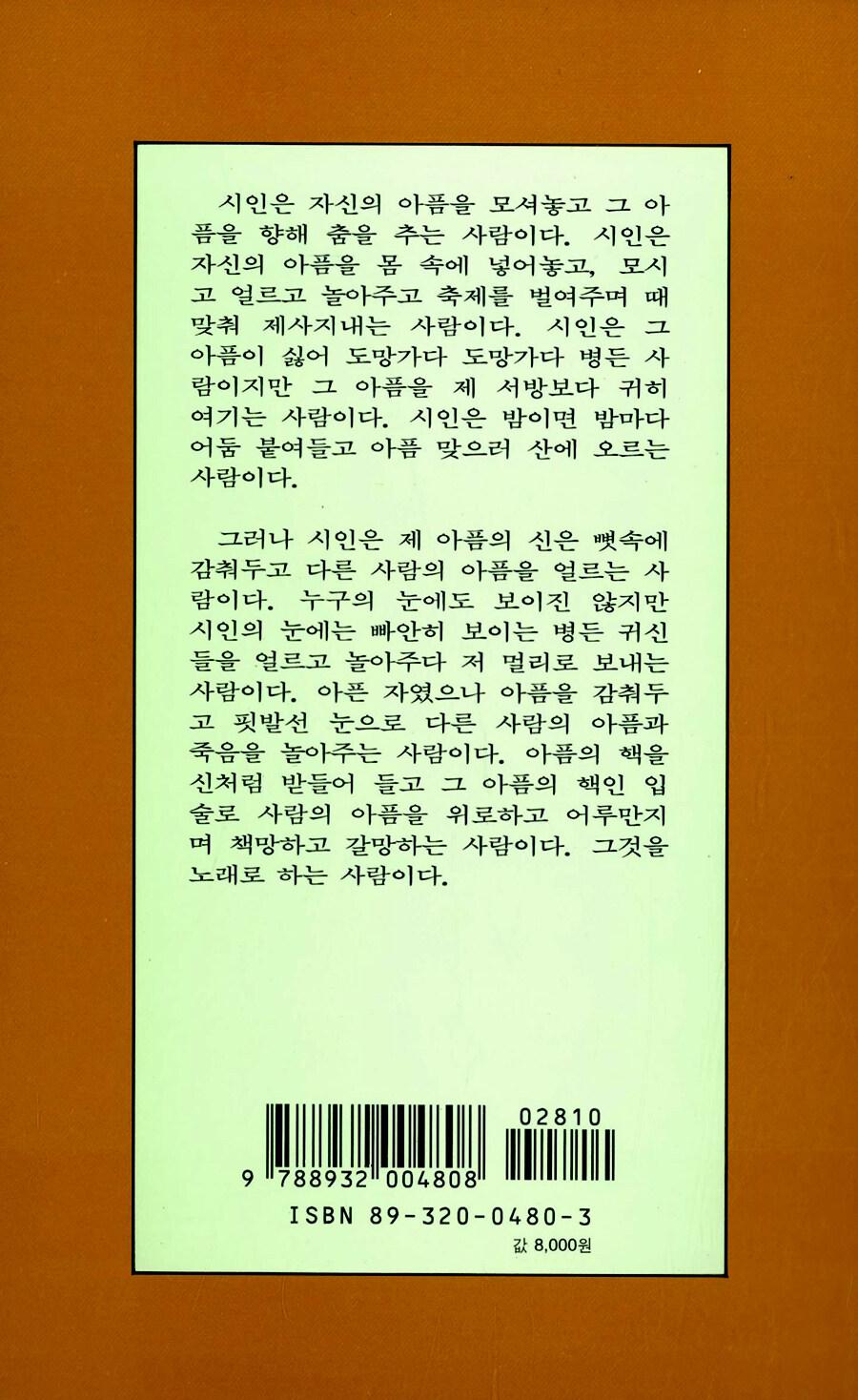 우리들의 陰畵 : 김혜순 시집