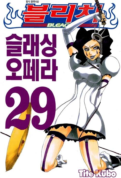 블리치 29
