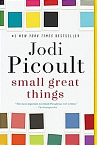Small Great Things (Paperback)