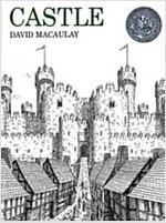 Castle (Paperback)
