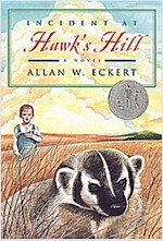 Incident at Hawk's Hill (Paperback)