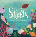 Shells: A Pop-Up Book of Wonder (Hardcover)