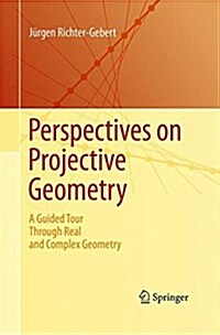 Perspectives on Projective Geometry: A Guided Tour Through Real and Complex Geometry (Paperback, Softcover Repri)