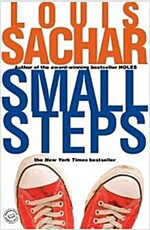 Small Steps (Paperback)