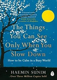 The Things You Can See Only When You Slow Down : How to be Calm in a Busy World (Paperback)