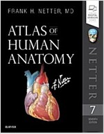 Atlas of Human Anatomy (Paperback, 7)