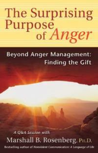 The surprising purpose of anger : beyond anger management : finding the gift