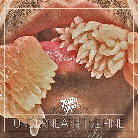 Toro Y Moi - Underneath The Pine [디지팩 에코 패키지]