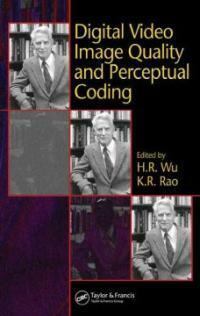 Digital video image quality and perceptual coding