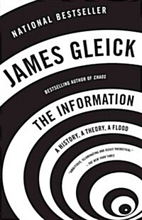 The Information: A History, a Theory, a Flood (Paperback)