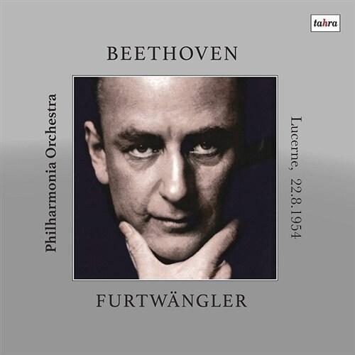 [수입] 베토벤 : 교향곡 9번 [180g 2LP]