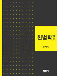헌법학입문