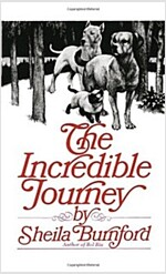 Incredible Journey (Mass Market Paperback)