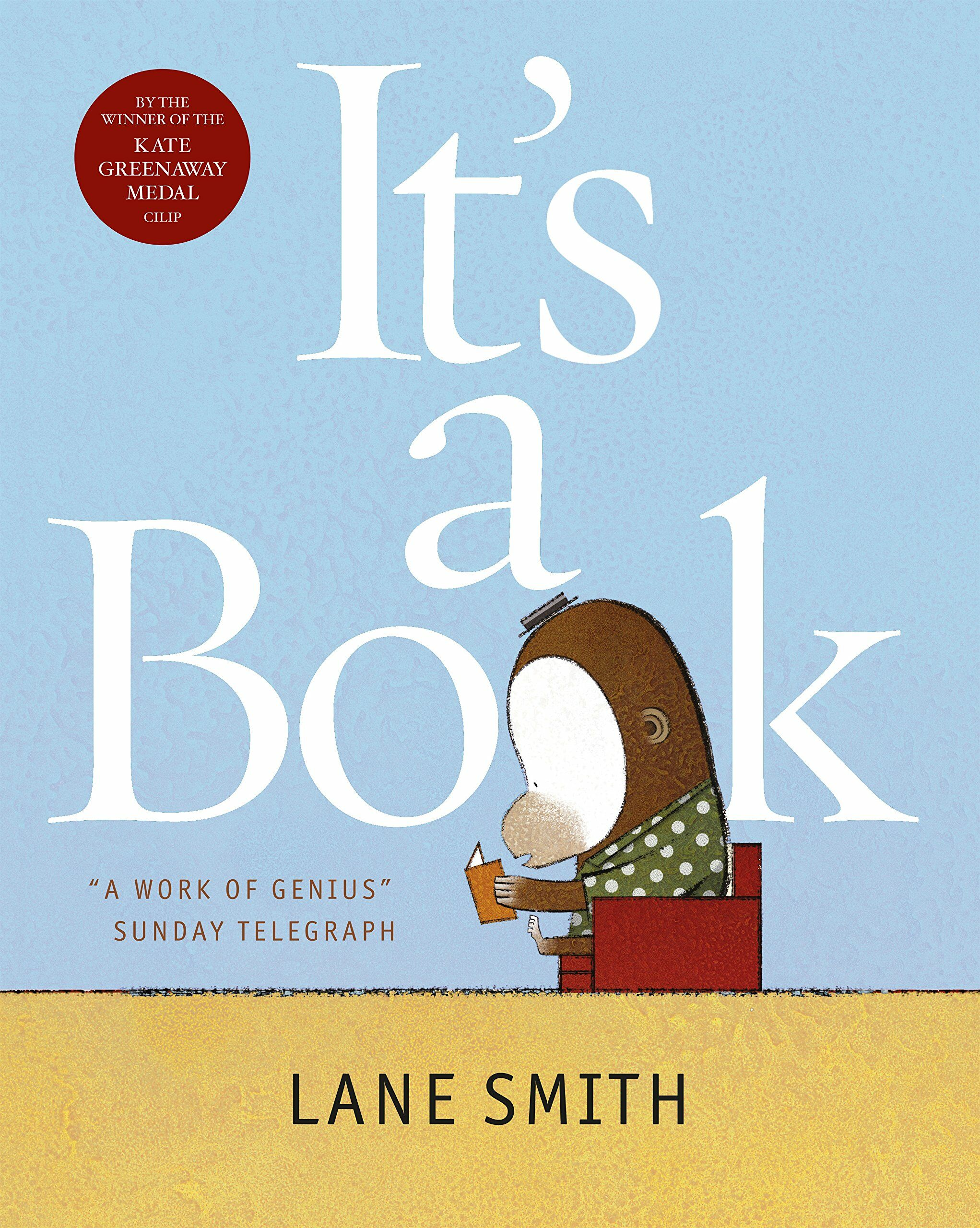 Its a Book (Paperback)