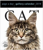 Cat Page-A-Day Gallery Calendar 2019 (Daily)