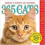 365 Cats Page-A-Day Calendar 2019 (Daily)