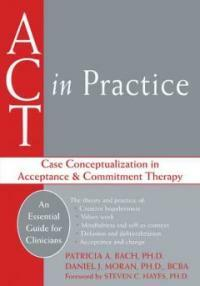 ACT in practice : case conceptualization in acceptance & commitment therapy